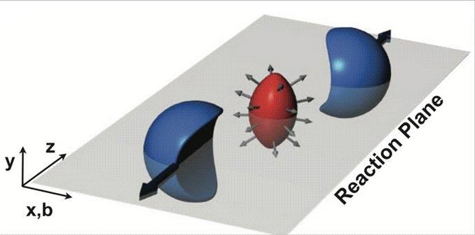 Formación de flujo anisotrópico en colisiones relativistas