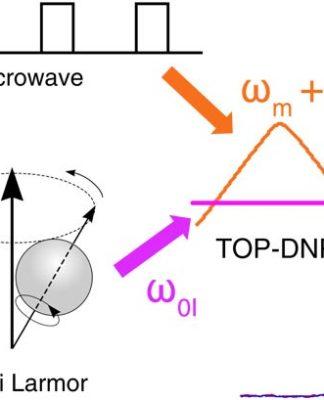 Polarización dinámica nuclear