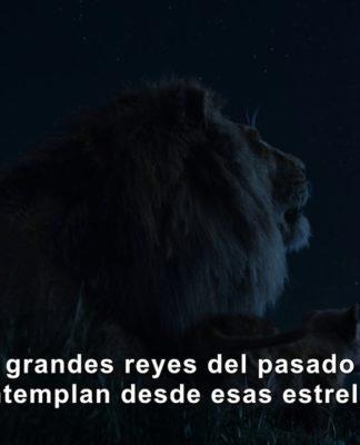 el rey león 2019 teaser