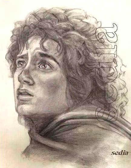 Frodo, por Sedia