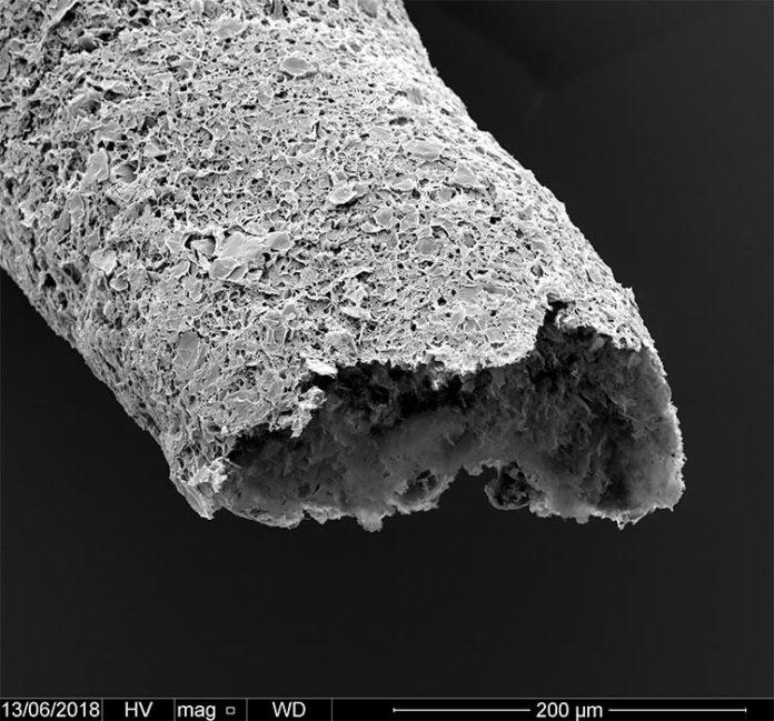 Primer plano de una estructura tubular realizada mediante impresión simultánea y autoensamblaje entre óxido de grafeno y una proteína