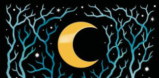 el-bosque-de-las-cosas-perdidas-shea-ernshaw-destacada