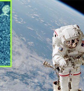 Gérmenes del espacio
