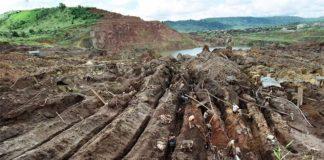 Minería de oro en el Amazonas