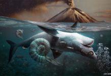Extinción pérmica (por Julio Lacerda)