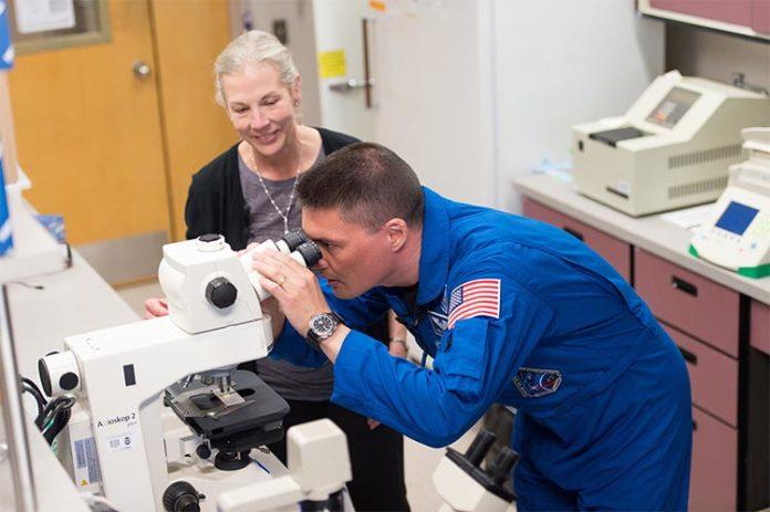 La profesora Susan Bailey y el Dr. Kjell Lindgren, astronauta de la NASA durante el estudio sobre efectos en la salud de los vuelos espaciales