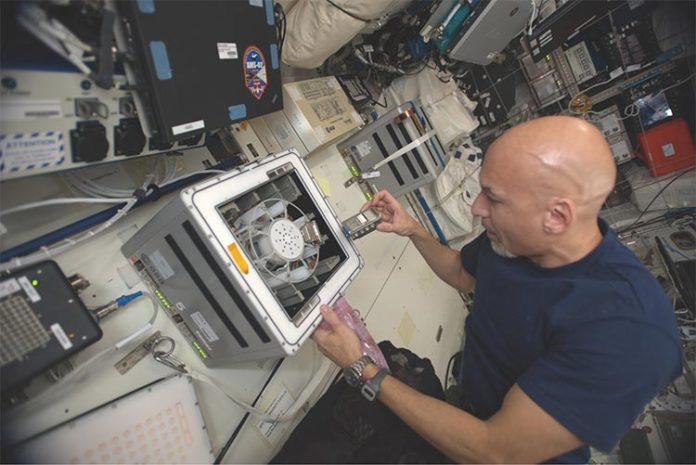 Minería en órbita: El astronauta Luca Parmitano coloca reactores de biominería en una centrífuga a bordo de la Estación Espacial Internacional