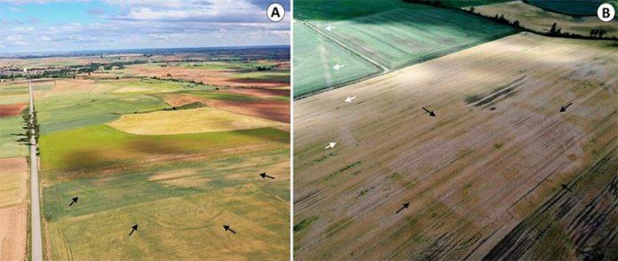 Fotografías aéreas del campamento de Tortolondro, la calzada romana y el campamento de Quintanilla de Riofresno