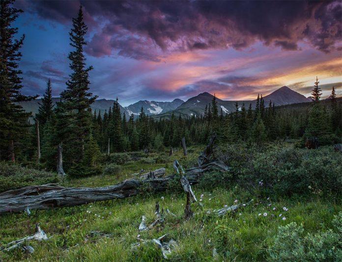 Los prados, bosques y cordilleras forman los altos paisajes alpinos de Niwot Ridge en las Montañas Rocosas, a 40 kilómetros al noroeste de Boulder, Colorado, que se recuperan de la lluvia ácida