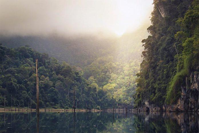 Humedal en el cuador que se verá afectado por el cambio climático