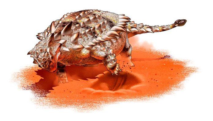 Reconstrucción de un anquilosaurio, un dinosaurio acorazado, que excava con sus extremidades anteriores