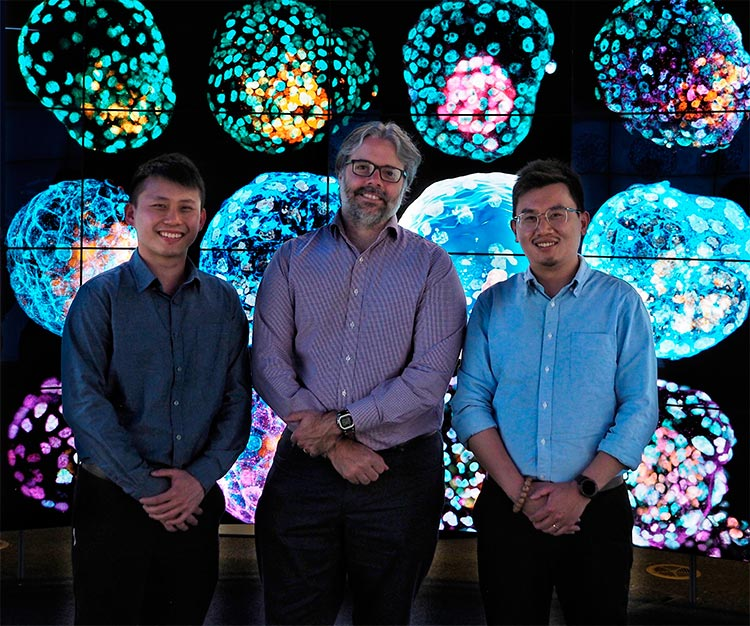 De izquierda a derecha: Jia Tan, Jose Polo, Xiaodong (Ethan) Liu