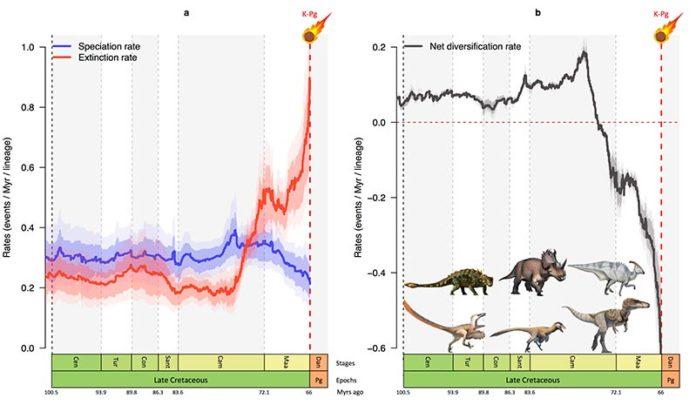 Gráficos que muestran cómo la tasa de especiación (azul) de los dinosaurios descendió y la tasa de extinción (rojo) aumentó bruscamente en los últimos 10 millones de años de la era de los dinosaurios