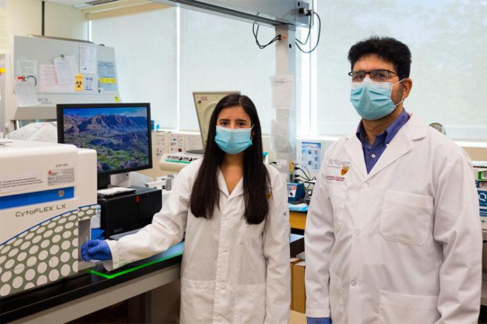 Tumores: Diseñan células para destruir células cancerosas sin dañar las sanas