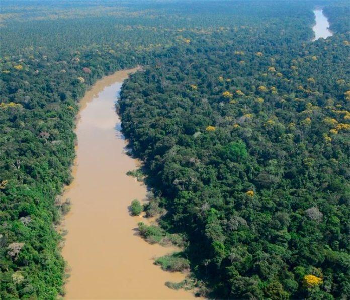 Vista aérea de la región de Putumayo de la selva amazónica en Perú