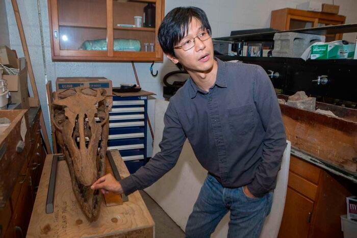 El paleontólogo de la UC Takuya Konishi ayudó a identificar una nueva especie de mosasaurio a partir de un espécimen que vio por primera vez en 2004. Aquí está frente a otro cráneo de mosasaurio