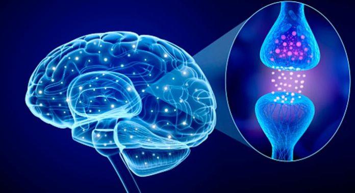 La enfermedad de Parkinson y la dopamina